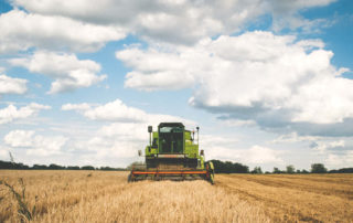 Agriculture Committees Harvesting SNAP Savings to Feed Agribusiness