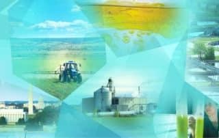 Biomass Research and Development Initiative Fact Sheet