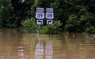 Ellis: After Flood