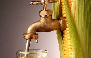 Federal Subsidies for Corn Ethanol and Other Corn-Based Biofuels