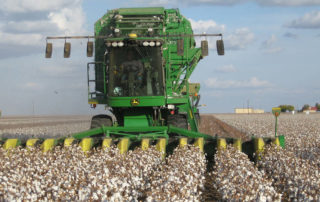 Fiscal Conservatives Identify Principles to Guide Farm Bill Reform