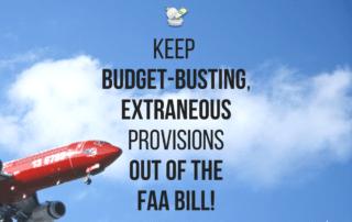 Flies on the Aviation Bill