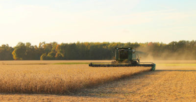 Just the Facts: Financial Health of the Agriculture Sector