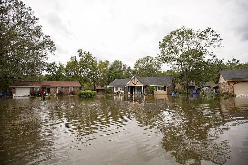 Steve Ellis: Hurricane Matthew spotlights need for flood insurance reform