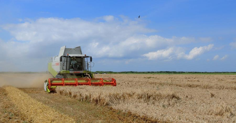 Farming for Cash Behind Closed Doors