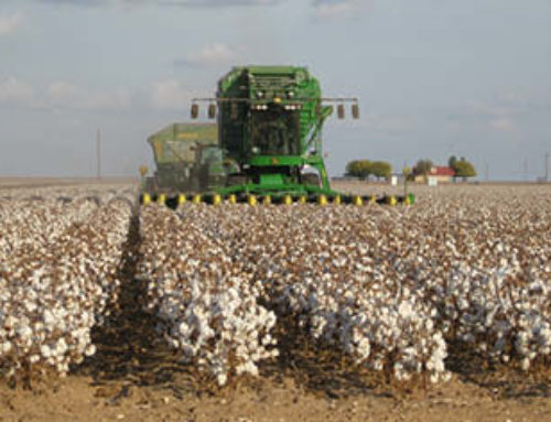 Farm BillHijacking Disaster Funding For Big CottonDoes cotton really need the help?