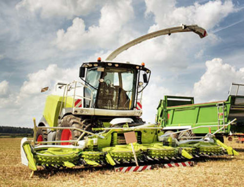 A Move in the Right DirectionPlanting Savings in the Farm Bill