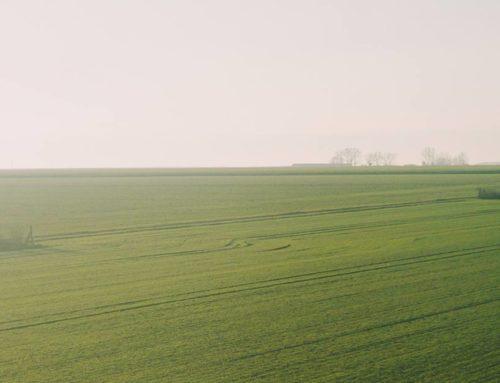 Crop InsuranceCrop Insurance ReimbursementEven more taxpayer money in crop insurance in 2018 Farm Bill.