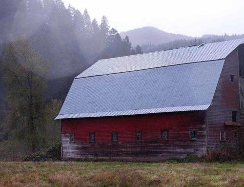 farm billFarm bill at the PrecipiceSupport amendments to strengthen crop insurance