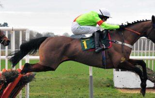A Racehorse Galloping