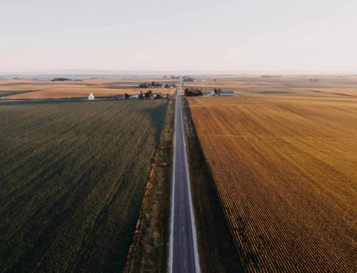 Covid-19, ARP AnalysisAgriculture and the American Rescue Plan Act of 2021New bill looks designed to keep agricultural subsidies flowing in 2021