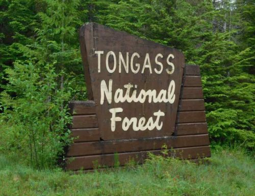 AnalysisAdministration to Finalize Roadless Rule Repeal Next WeekBreaking down the rule and its impact on the Tongass National Forest in Alaska
