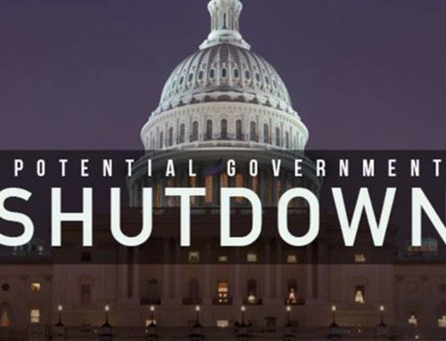 WastebasketShutdown ShamblesWasteful shutdown over a wasteful border wall