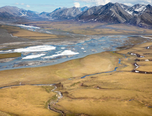 Analysis2019 Arctic Leasing Plan StalledAs the end of the year nears, its good news for taxpayers that leasing in the Arctic won't happen, at least for now.