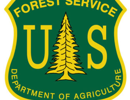 Rolling Analysis, FY21 BudgetForest Service – Growing LossesAgency plans could deepen taxpayer losses from timber sales and road-building in national forests