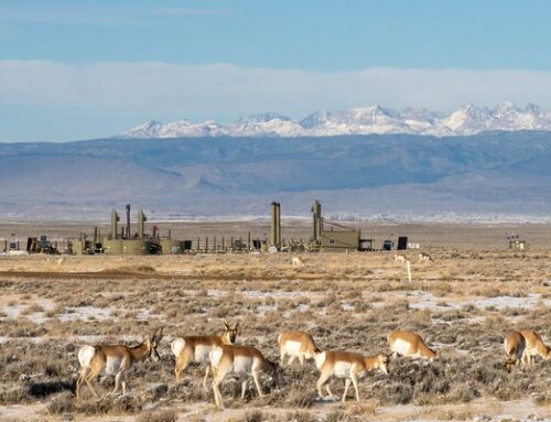 Press ReleaseNew Report: Wyoming Losing out on Billions in Revenue from Oil and Gas Leasing and Production on Federal Lands